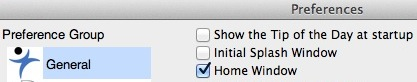 Preferences with JMP Home Window selected