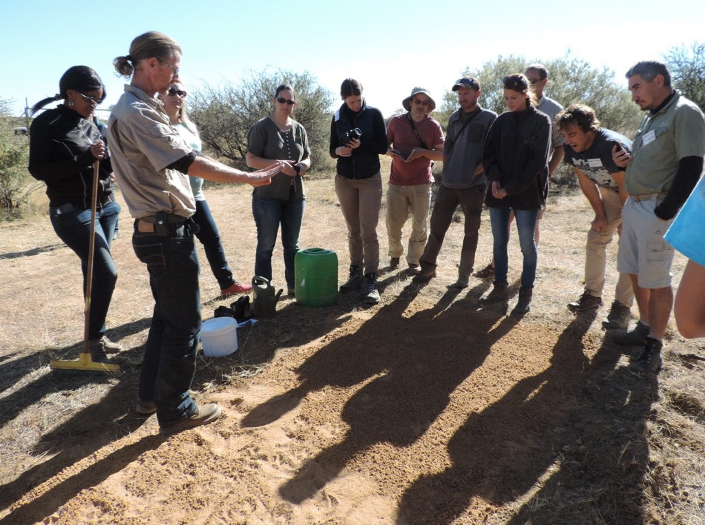 WildTrack transferring technology from the lab to the field: Field biologists from Southern Africa, Brazil, Australia, the UK and the USA gather in Namibia to learn how to image footprints.