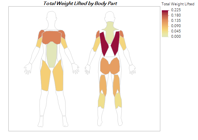 Custom maps of body shape help me track and understand my workout data.