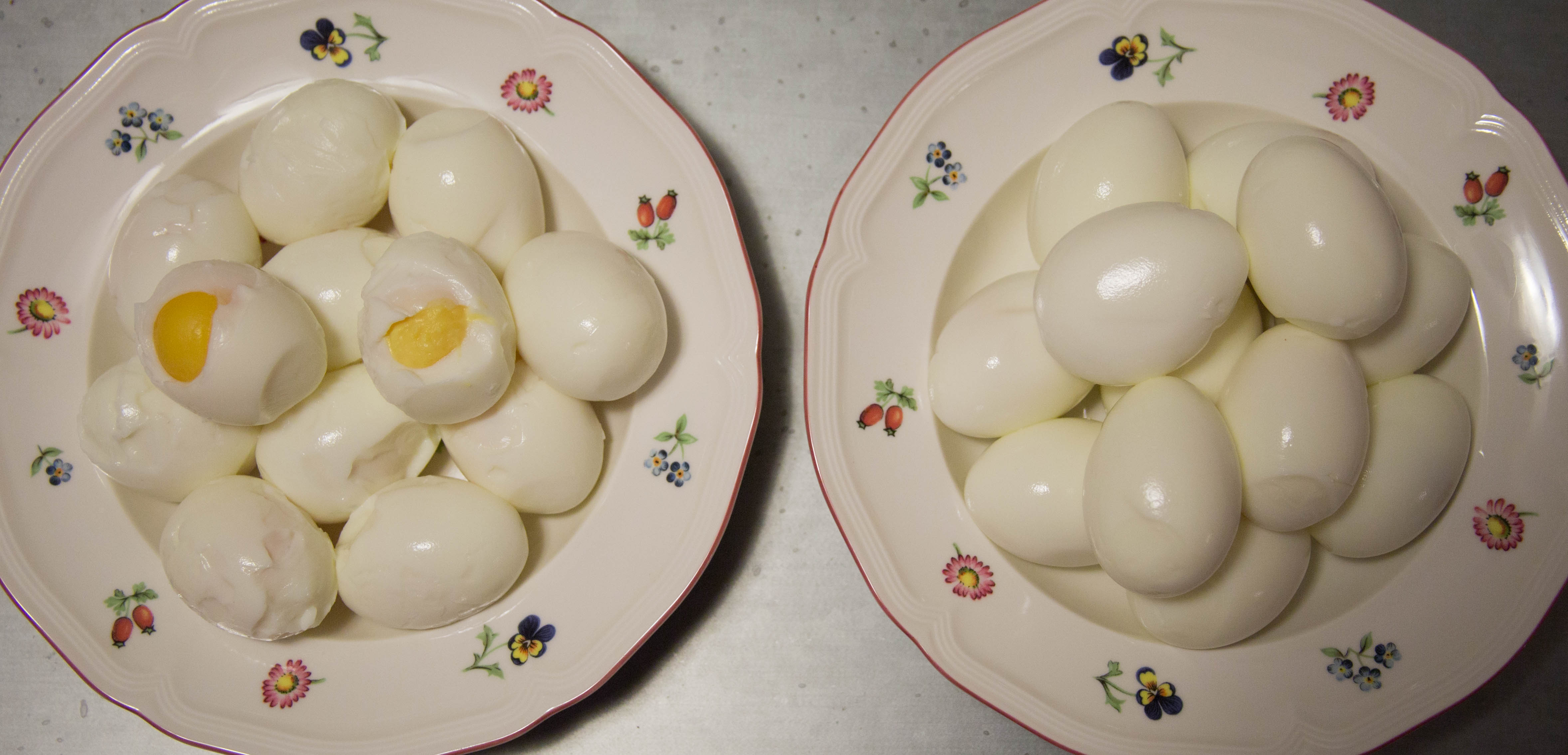 eggs_side_by_side