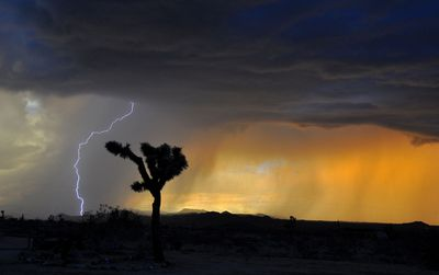 What parts of the US see the most lightning strikes? (Image from Wikipedia. By Jessie Eastland - Own work, CC BY-SA 4.0, https://commons.wikimedia.org/w/index.php?curid=44273148)