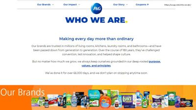 P&G JMP Survey overview Discovery Summit ppt_Page_02.jpg