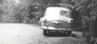 8677_Ford.jpg