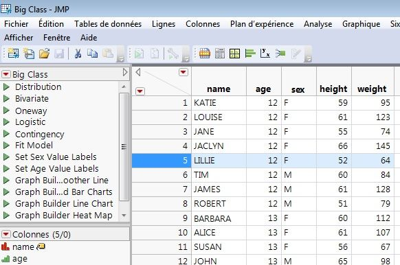 Datatable with selected line.jpg