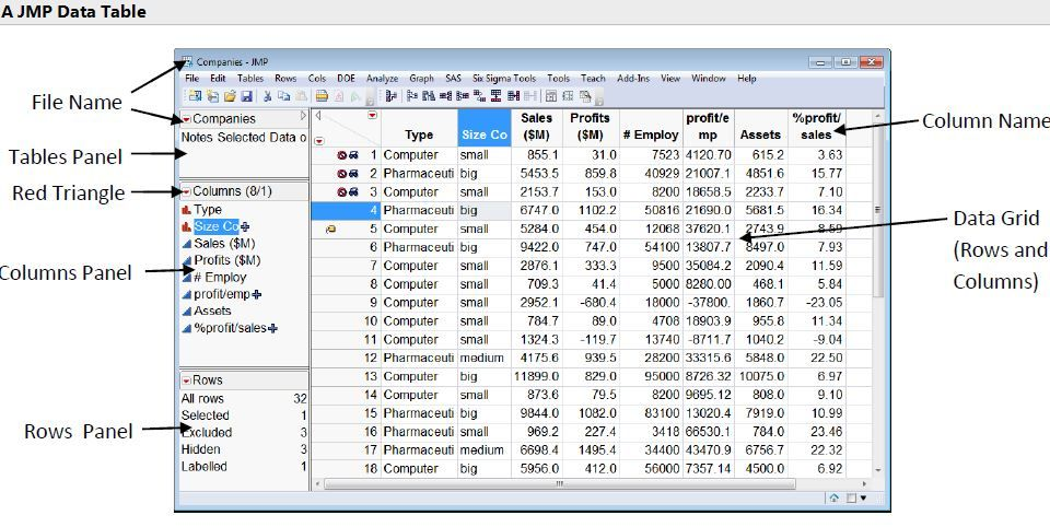 JMP Data Table.JPG